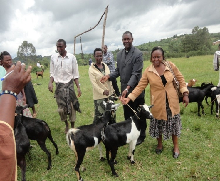 Animal integration in crop production; Caritas officers delivering goats to project beneficiaries